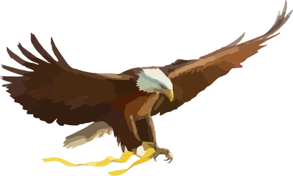 Philippine Eagle clipart Download #18 Eagle Eagle Philippine