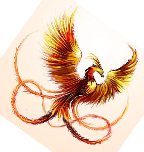 Phoenix clipart ash clipart 53  The best on