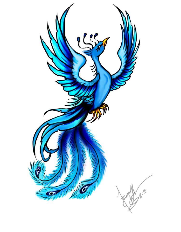 Phoenix clipart blue Tattoo Did This Tattoo Did