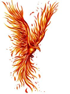 Phoenix clipart hans @DeviantArt Phoenix phoenix Lucky978 by