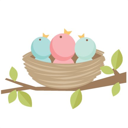 Nest clipart cute Birds bird collection scrapbook png
