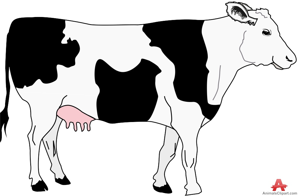 Other clipart cow Clipart with Design Black Cow