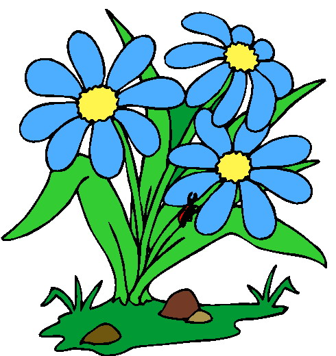 Plant clipart flowering plant Cliparts Download With  Flower