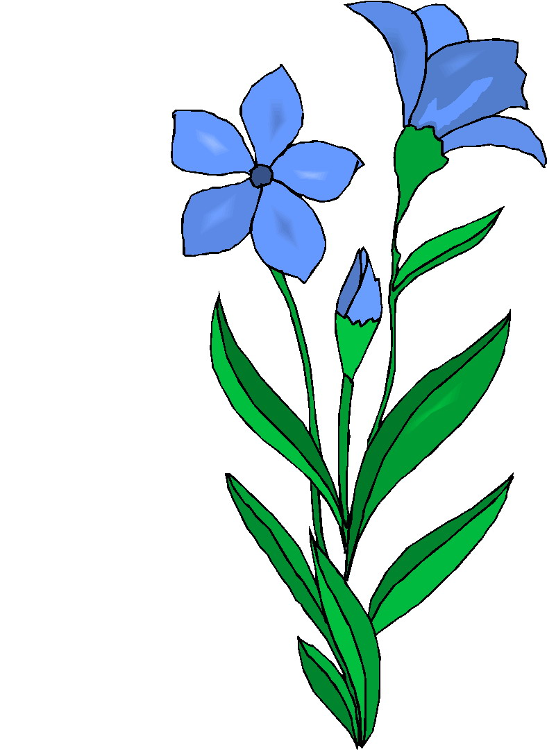 Plant clipart tall Cliparts Art Plant Download Free