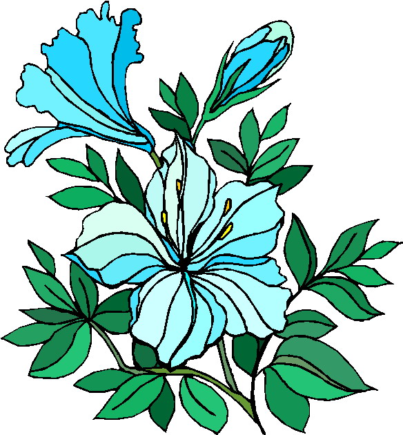 Rose clipart different kind plant #3