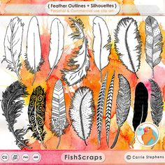 Photoshop clipart bird feather & Art Feather Colorful PNG