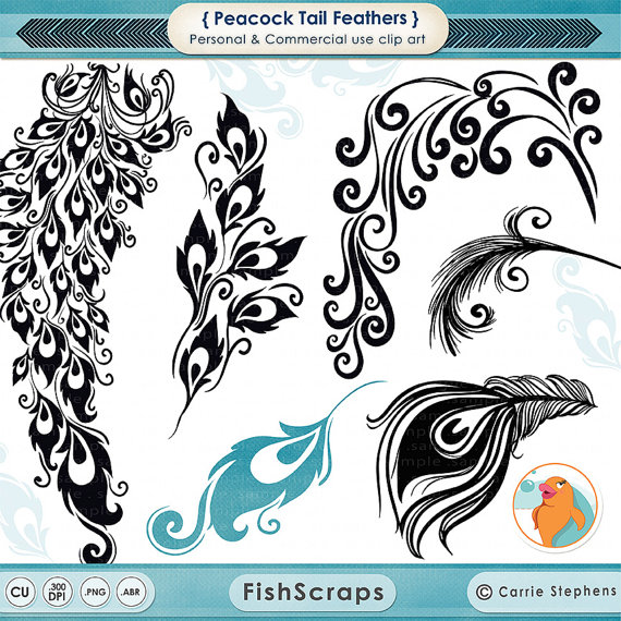 Peacock clipart graphic design Feather  DIY Art Decorative