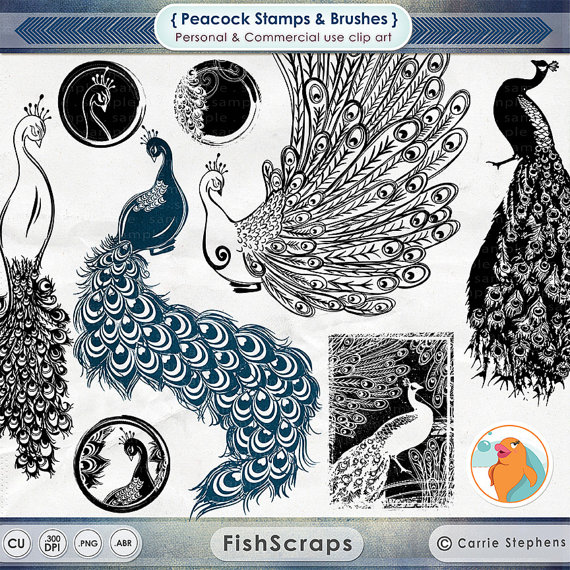 Photoshop clipart peacock tail Sheet Peacock ClipArt from PNG