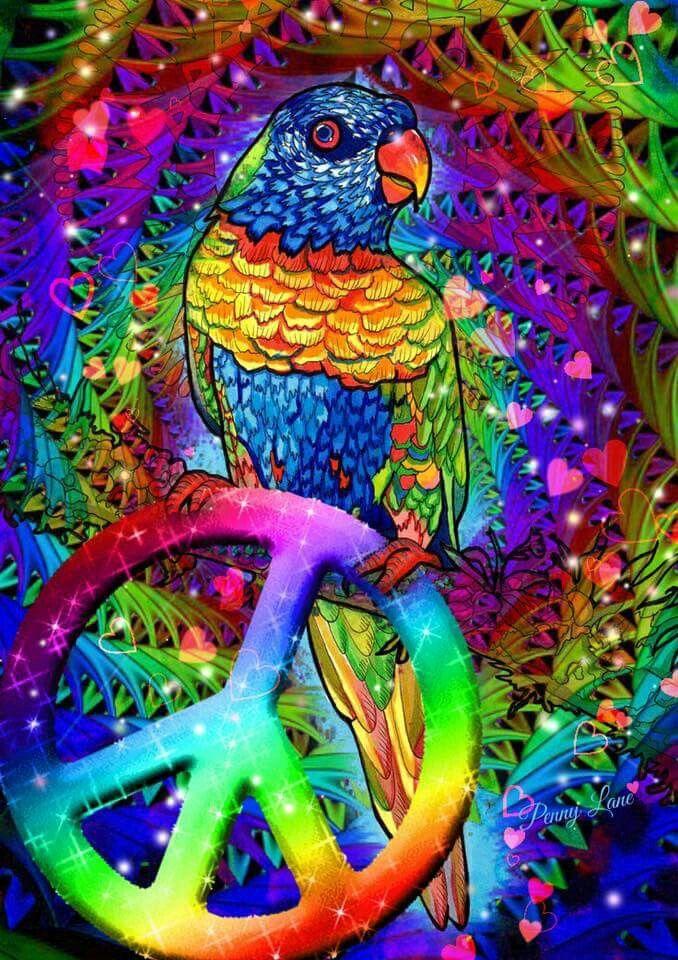 Physcedelic clipart peace bird ☮✌~Paz~✌☮ Pinterest Best ~❤ AMOR