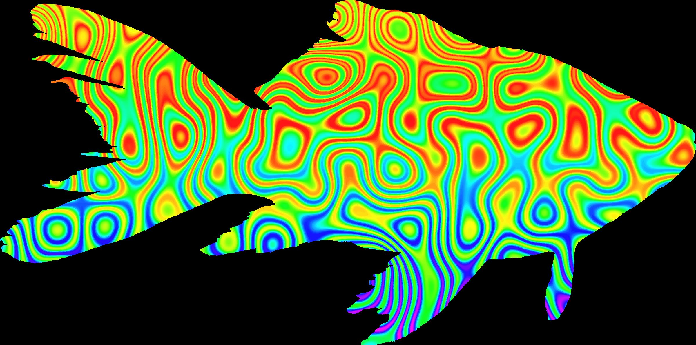 Physcedelic clipart transparent Clipart goldfish Psychedelic goldfish Psychedelic