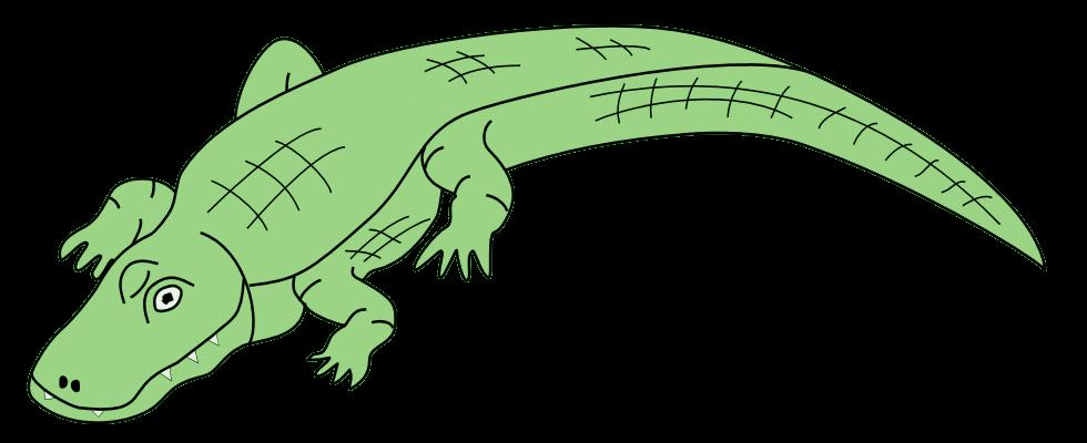 Alligator clipart transparent Clipart Clipart Clipart Free Alligator