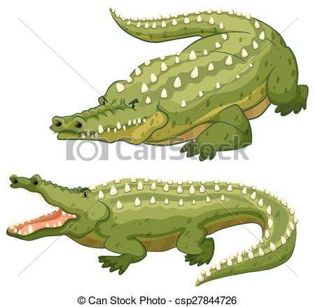 Alligator clipart two Illustration on of crocodiles green