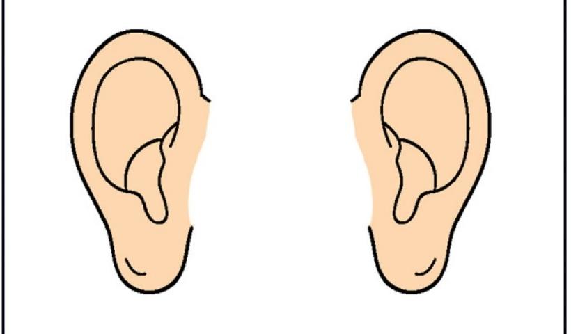 Pice clipart ear Art ear clip 7takaxlta ear