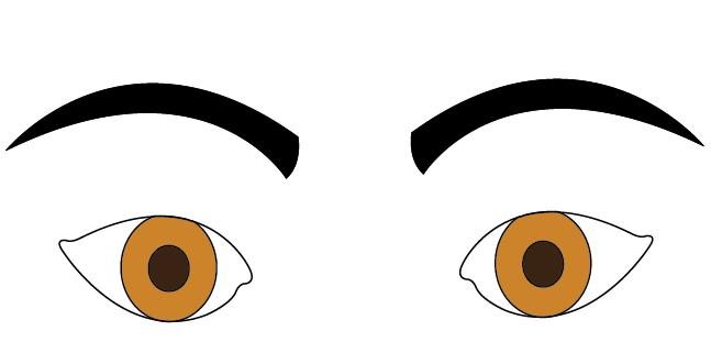 Pice clipart eyebrow Shapes and Eyebrow Eyebrows Personality