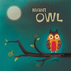Night clipart night owl Night NVR AC 1080p Channel