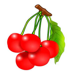 Pice clipart red fruit #5