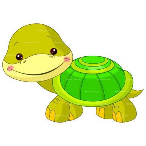 Reptile clipart turtle #5