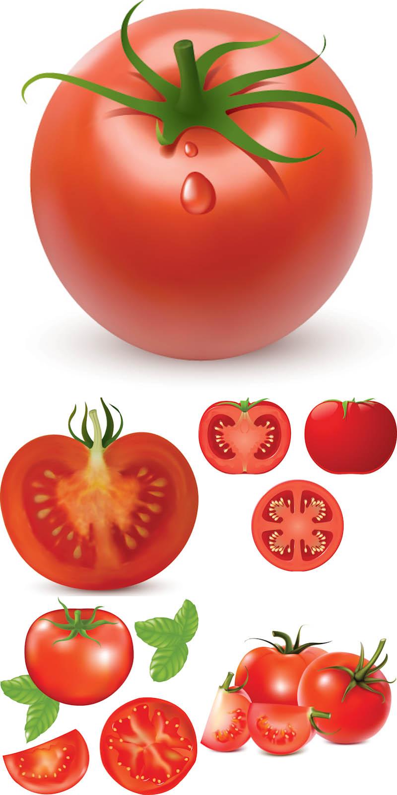 Pice clipart tomato Art Picture Tomato Printable Clipart