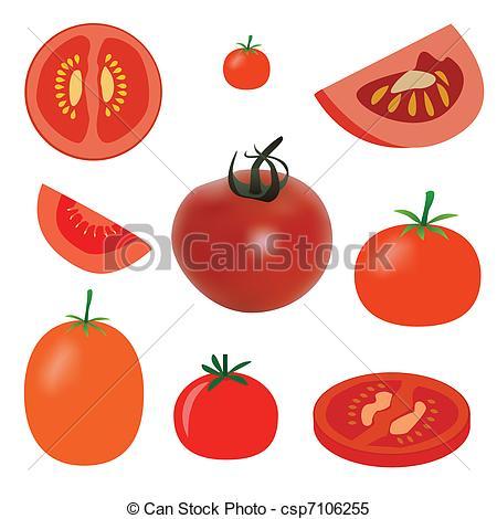 Pice clipart tomato Of  tomato Vector Vector