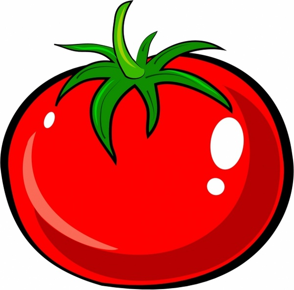 Drawn tomato (398 tomato  vector download