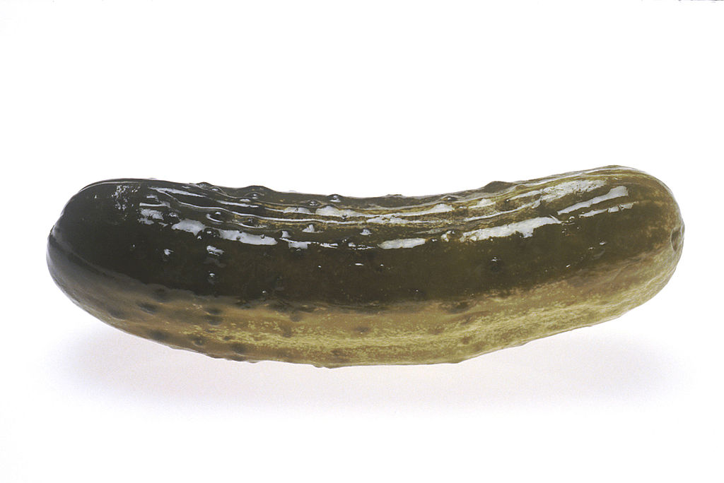 Pickle clipart transparent Wikimedia jpg (1) File:Pickle Commons