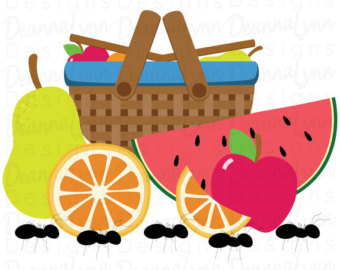 Picnic clipart vector Fruit clipart Watermelon png Apple