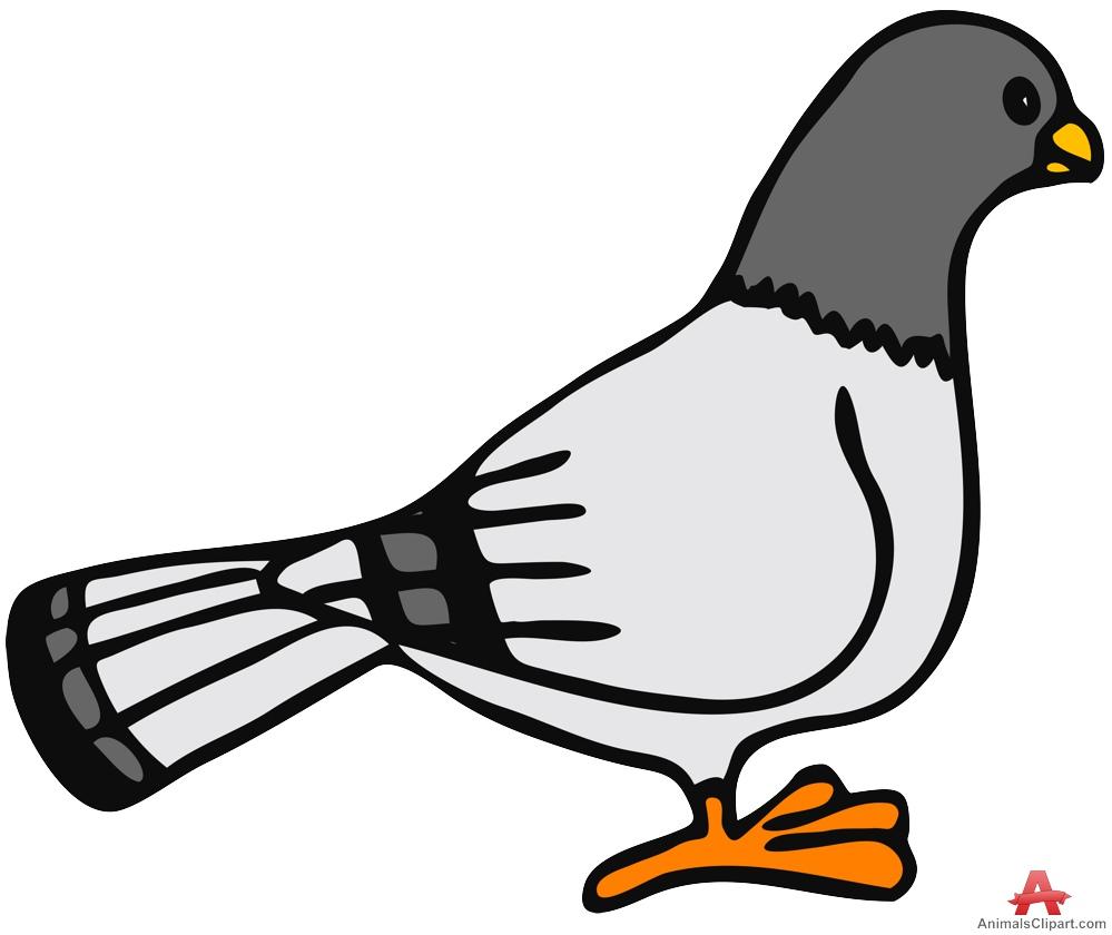 Pigeon clipart Clipart ClipartAndScrap Download clip art