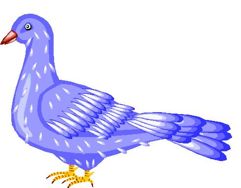 Pidgeons clipart blue bird Clip art Pigeons clip Art