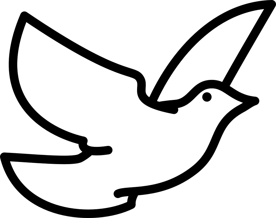 Pigeon clipart simple bird Foraging Doves  Max Bird