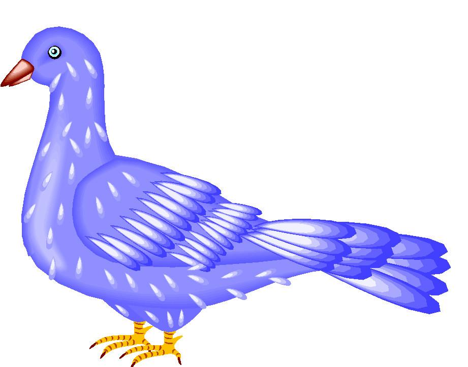 Pigeon clipart simple bird Pigeon Images animal Art Pigeon