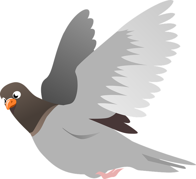 Peace Dove clipart pigeon flying #2
