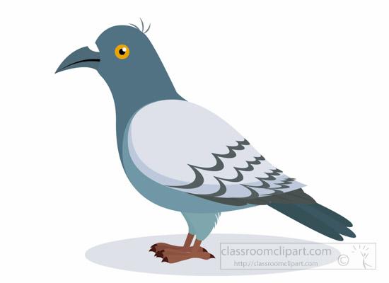 Bird clipart pigeon Pigeon 2 Art Clip clipart