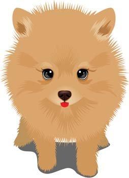 Pie clipart psy Dog  Lion Like 365PSD