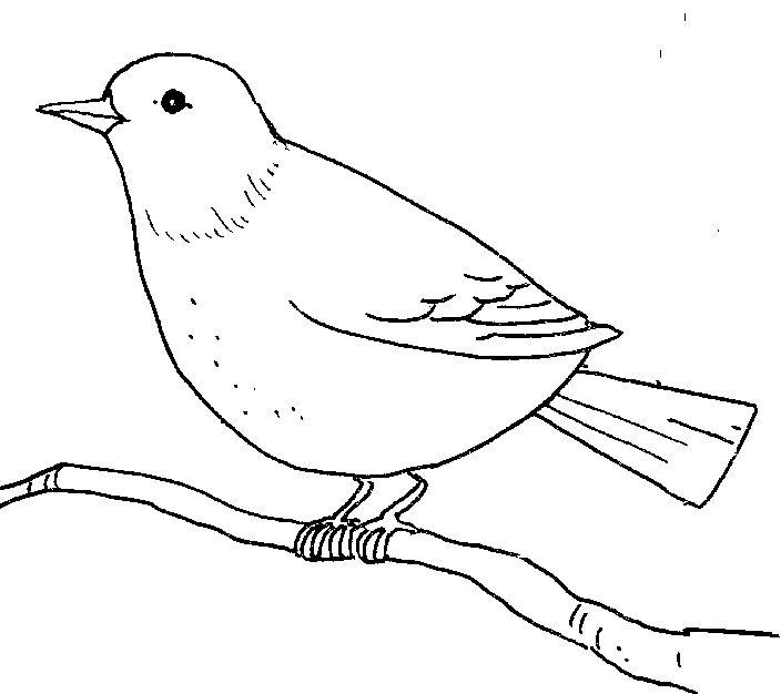 Brds clipart line art Art birds Future If plan
