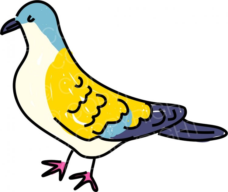 Turtle Dove clipart cartoon #2