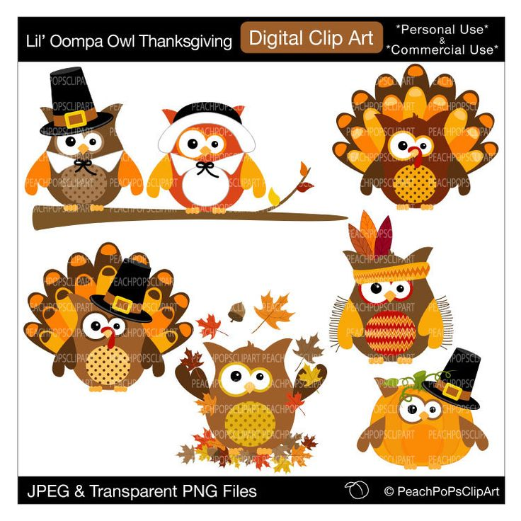 Owl clipart pilgrim Pinterest and thanksgiving about cute