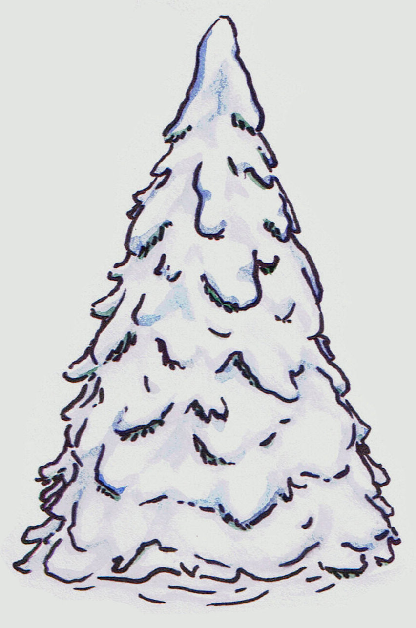 Pine clipart treee & Winter Clipart watercolor Here