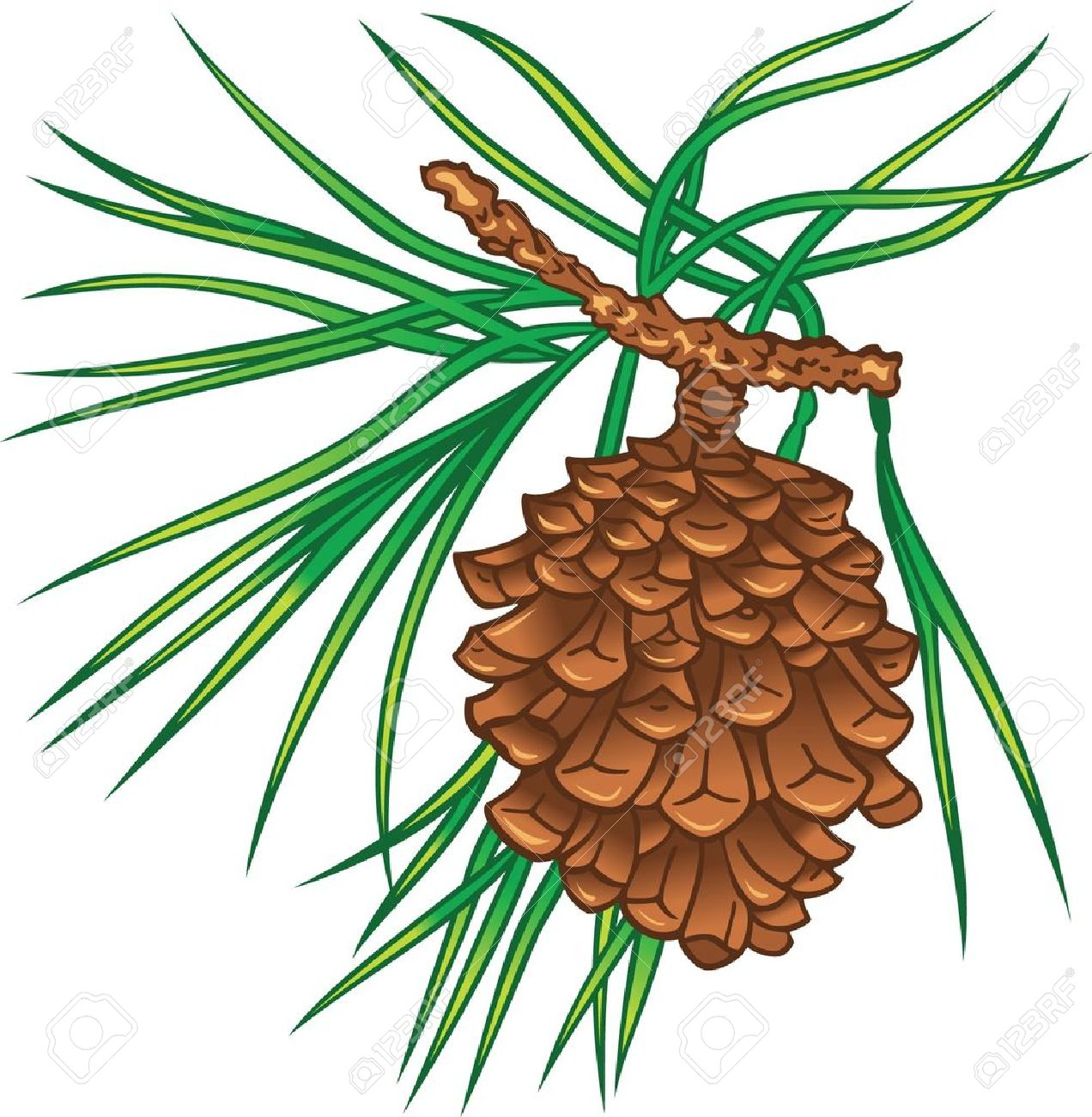 Pine clipart treee Vectors clipart Clipground Free Green