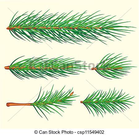 Pine clipart pine needle Vector Pine Branches Pine brush