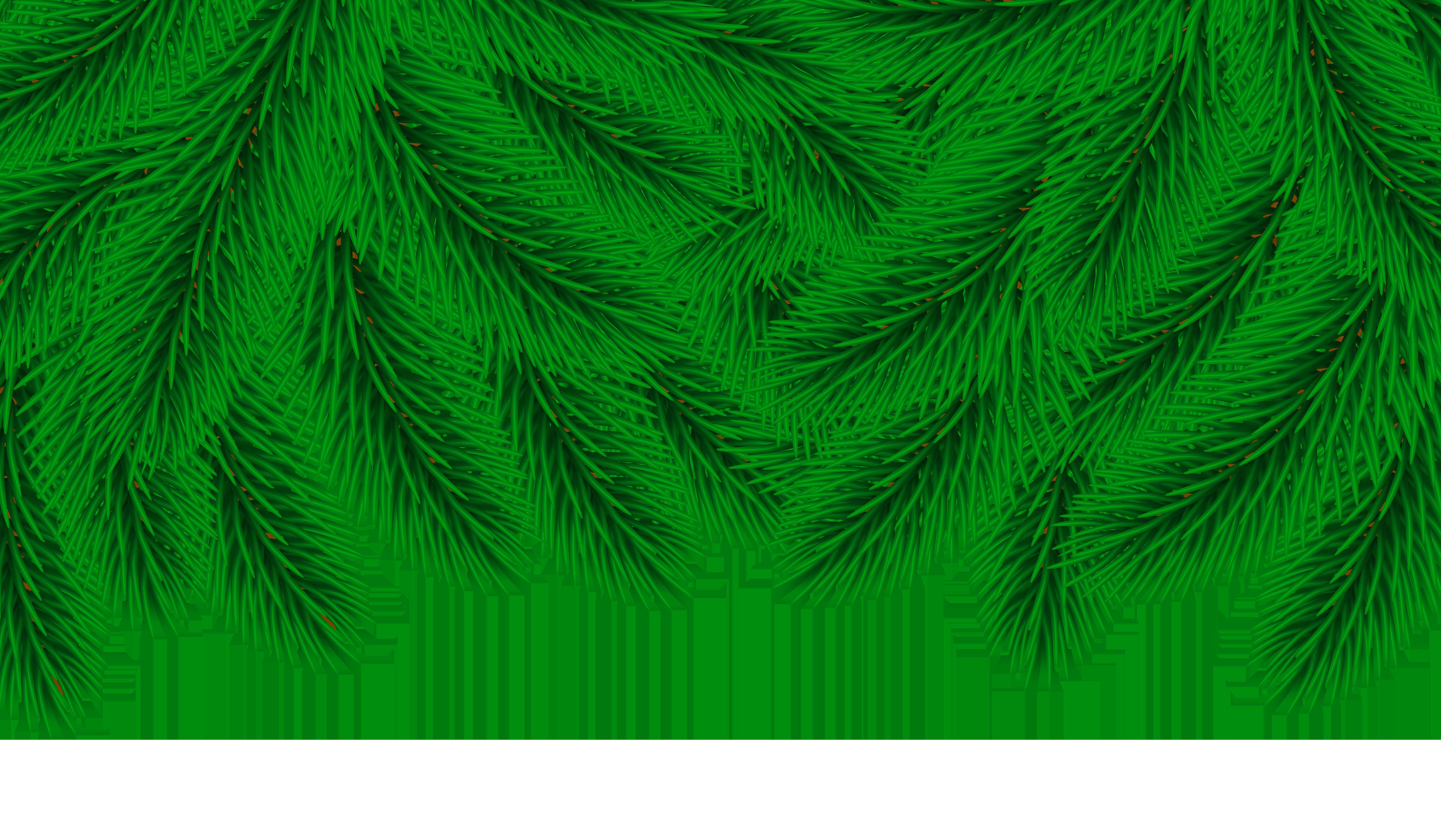 Pine clipart transparent Border Image Art Decor