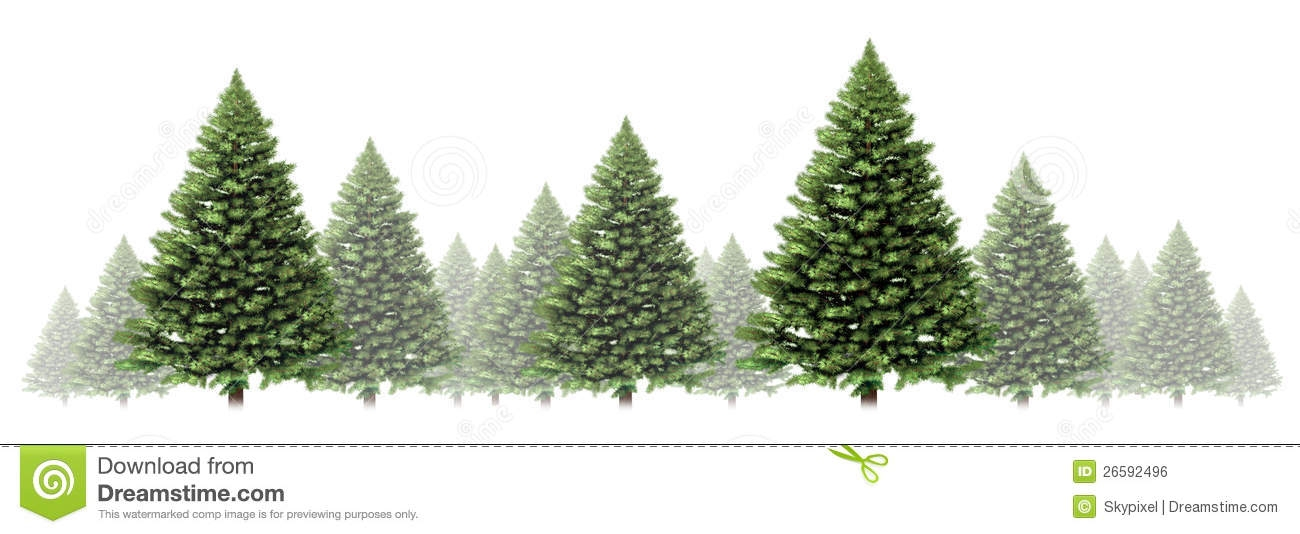 Pine clipart winter Clip Tree Art com Winter