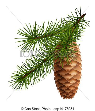 Pine Cone clipart Art Search  cone with