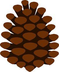 Pine Cone clipart Cone Pine cones and по