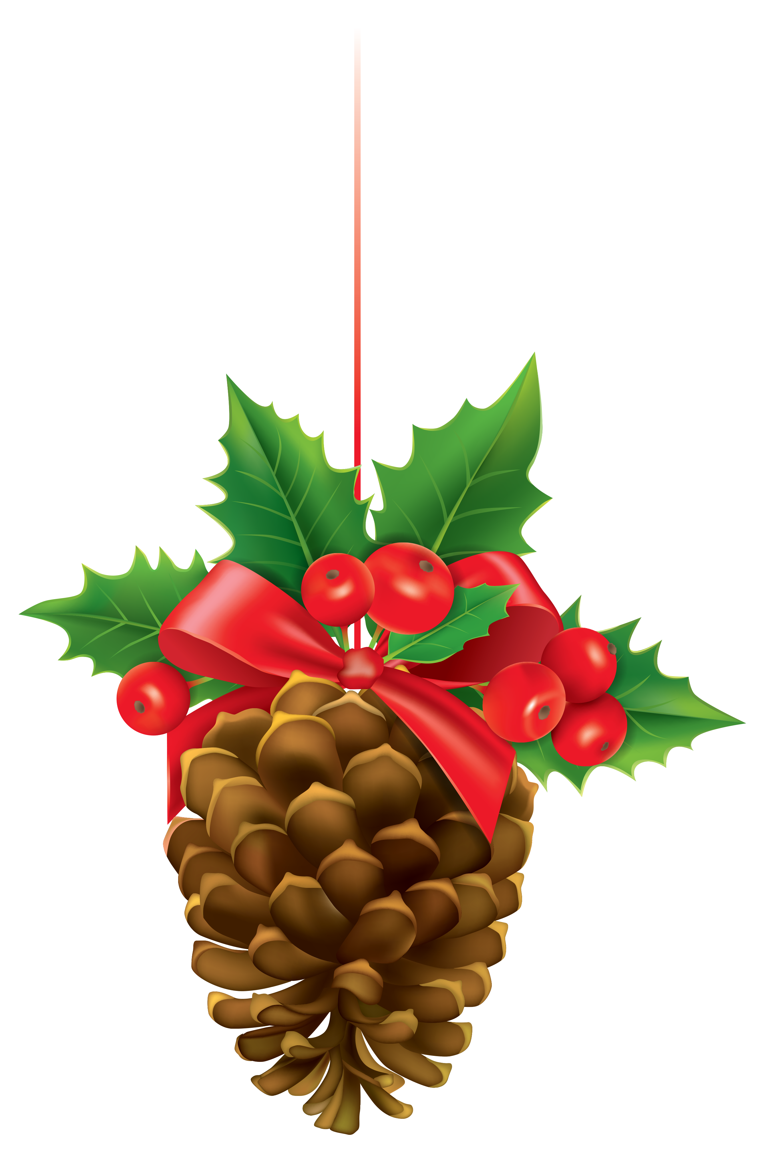 Pine Cone clipart cartoon  Gallery size with full