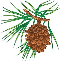 Pine Cone clipart pine leaves Silhouetted Stencil Patterns snowy <b>pine</b>