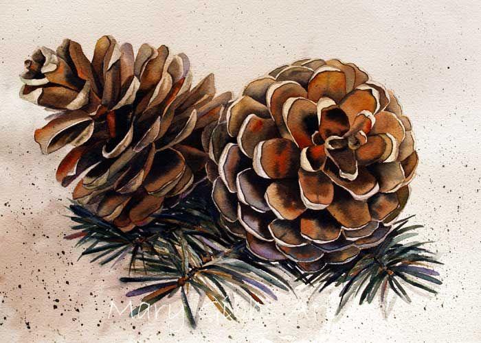 Pine Cone clipart pine leaves ArtPine Watercolor LeavesWatercolor Art of