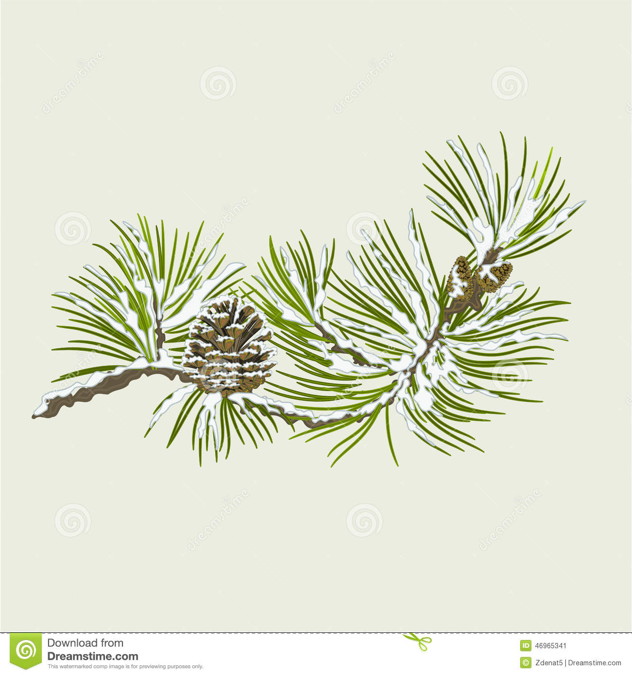 Pine Cone clipart snowy Pine And Branch Vector Download