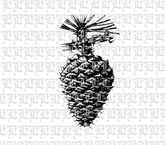 Pine Cone clipart vintage Graphic Vintage 300 Art Pine