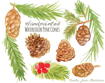 Pine Cone clipart watercolor Watercolor Etsy cones Pine Clip