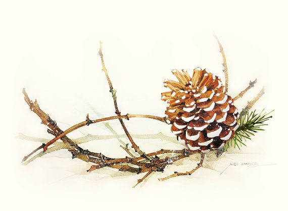 Pine Cone clipart watercolor Print Minimalist Painting images print